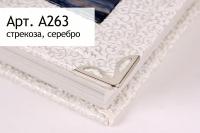 A263 стрекоза, серебро